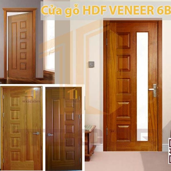 Mẫu cửa gỗ HDf Veneer 6b ASH