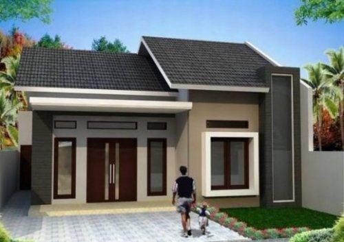 Mẫu 11: Xây dựng nhà ở giá 300 triệu đô la theo phong cách nhà gỗ có 2 cánh hoa