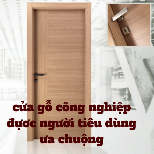 cửa gỗ công nghiệp-